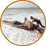 Links to Google Web Directory for Agricultural Biodiversity [Artisanal fisherfolk launching boat in Kerala, India]