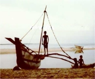 Traditional Sri Lankan outrigger ORU - 8,000 were destroyed by the tsunami