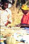 Farmer exhibiting seeds to her neighbour at the 1998 Maragwa Seed Show, Kenya